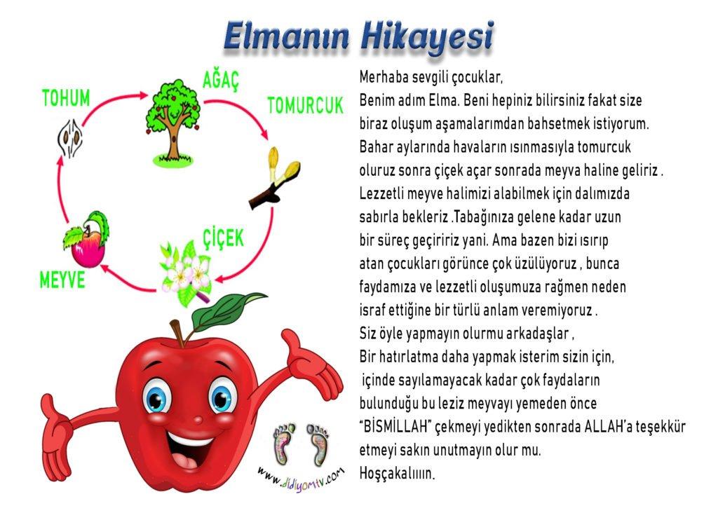 elmanın hikayesi, ilk gün etkinliği, elma