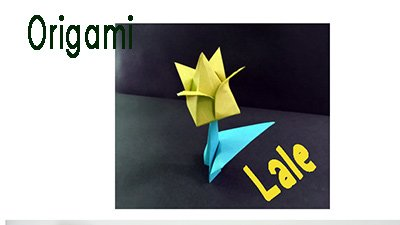 Origami lale Yapımı , Origami lale, lale origami
