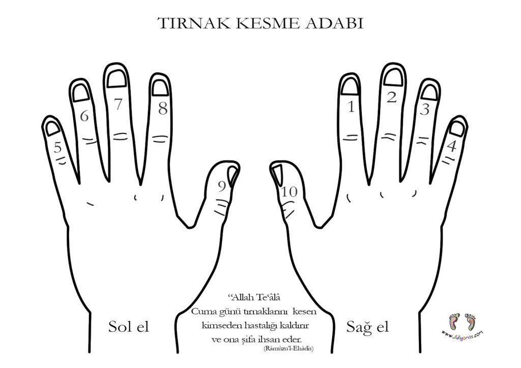 Vücut  Temizliği - tırnak kesme adabı-tırnak-kesme-sünneti-el-boyama-sayfası-adablarımız