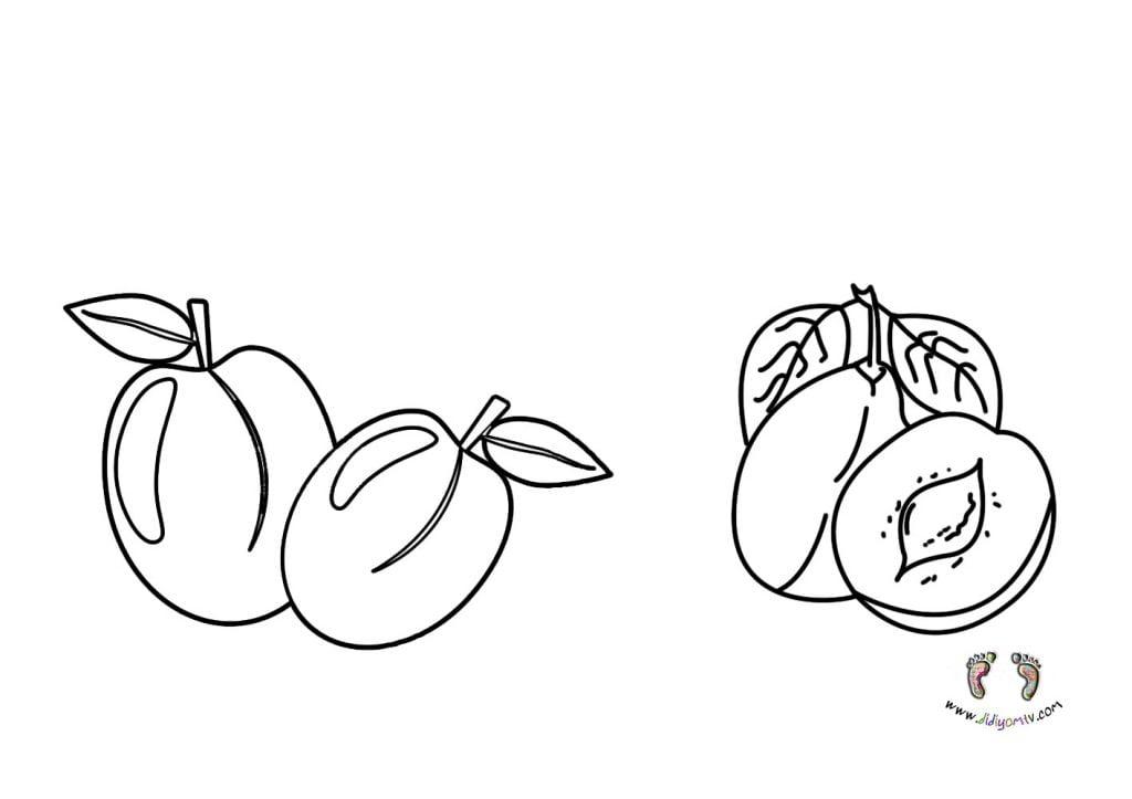 erik-boyama-sayfası-meyve-boyama-sayfası-meyve-boyama-basit-boyama-sayfası-okul-öncesi-boyama-2