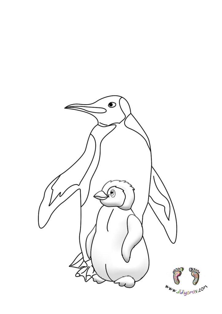 Penguen Boyama Sayfası - Hayvanlar Boyama