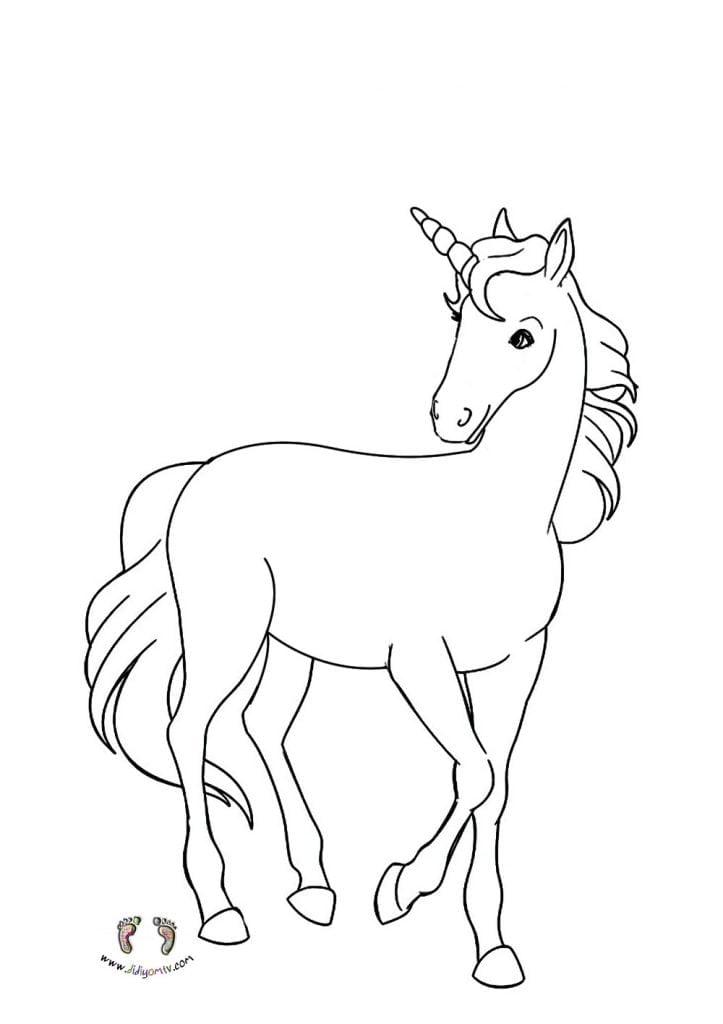 Unicorn Boyaması - Unicorn Boyama - Tek Boynuz Boyama