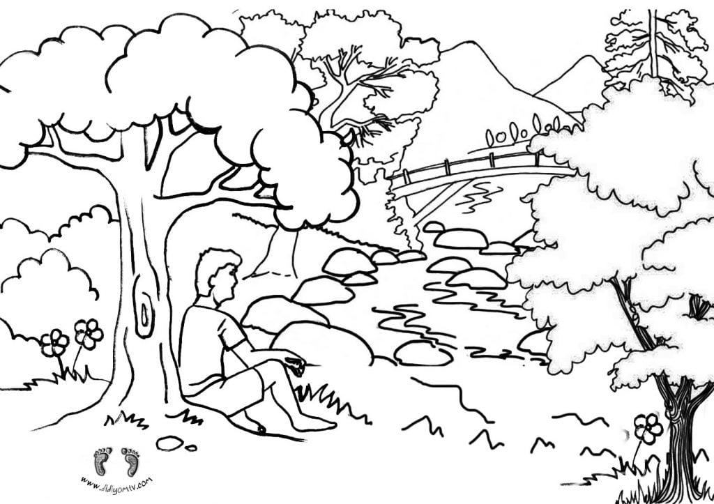 Orman Haftası Boyama Sayfaları - Orman Haftası Etkinlikleri
